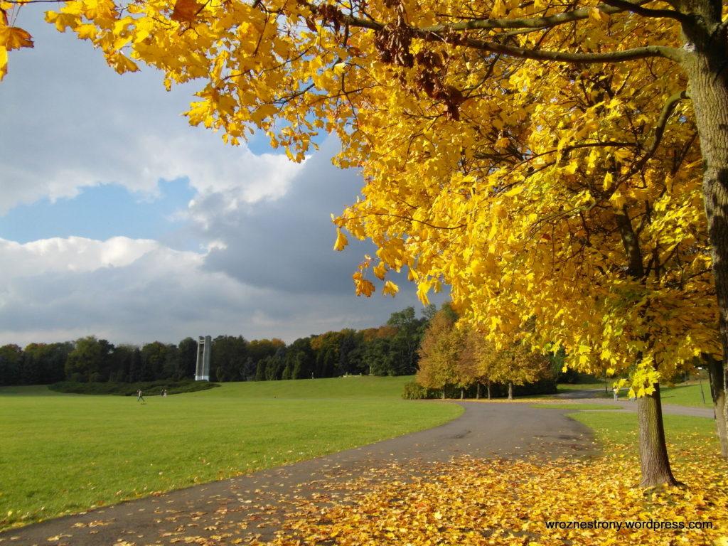 Jesienny spacer w słoneczny dzień to czysta przyjemność, ale zbierały się już ciemne chmury