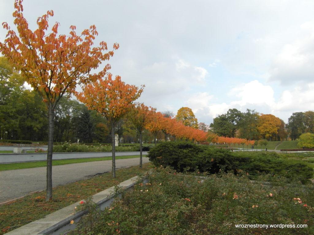 Rosarium w jesiennych barwach