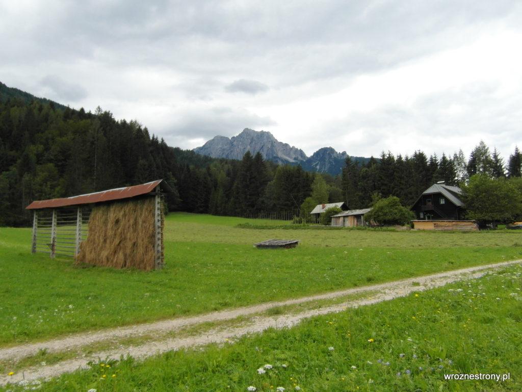 Suszące się siano na alpejskiej łące