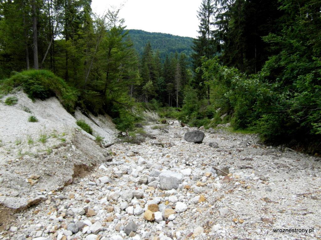 Koryto wyschniętego potoku