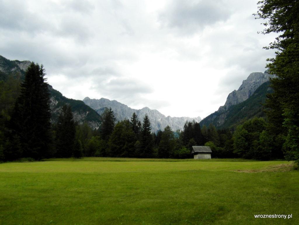 Łąka i alpejskie szczyty