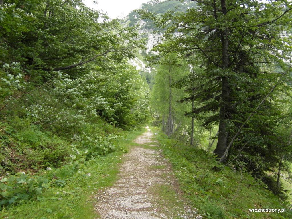 Szlak z przełęczy Vršič do Kranjskiej Gory, Alpy Julijskie