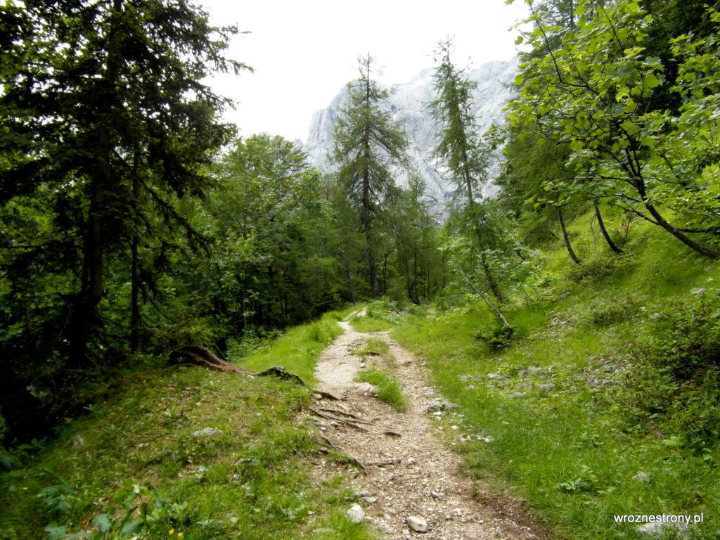 Szlak - łagodna trawiasta ścieżka