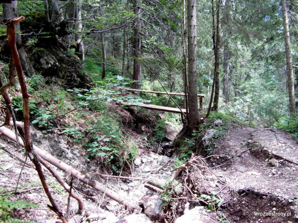 Szlak biegł przez wyschnięty potok