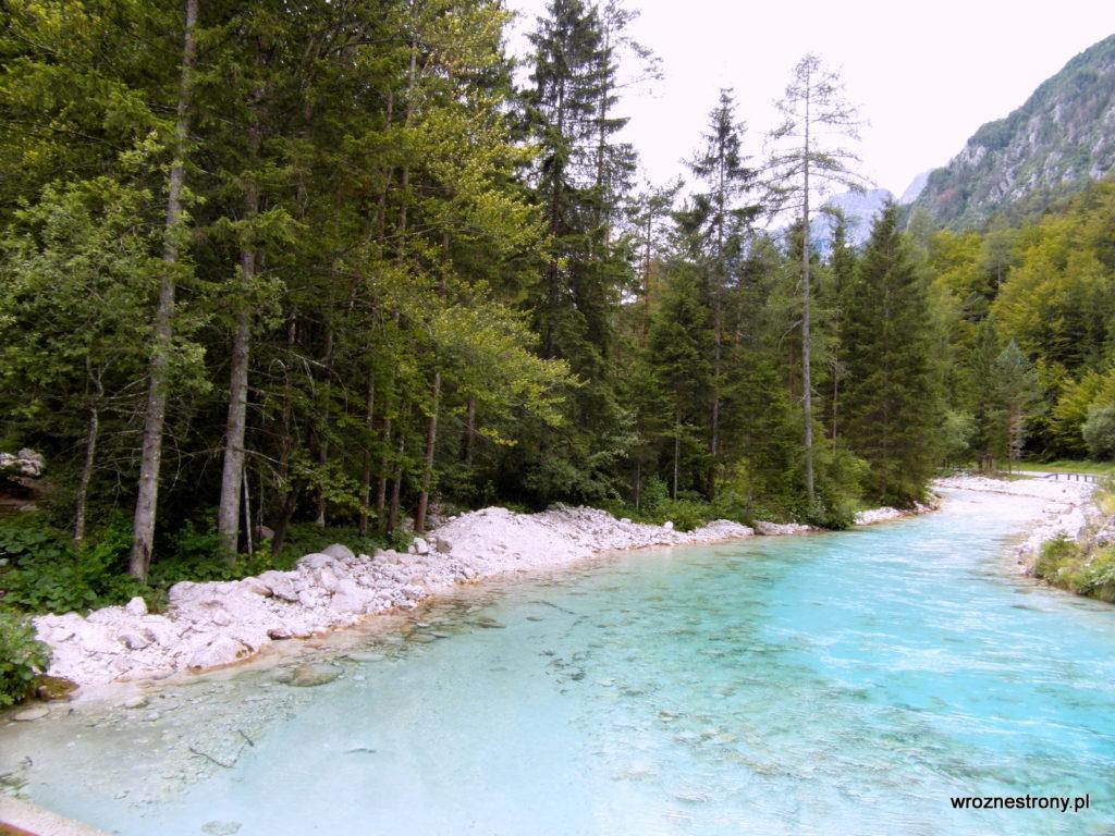 Zachwycił nas kolor wody w potoku