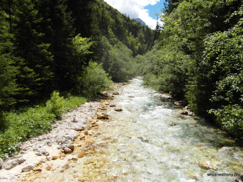 Górski potok w Alpach Julijskich