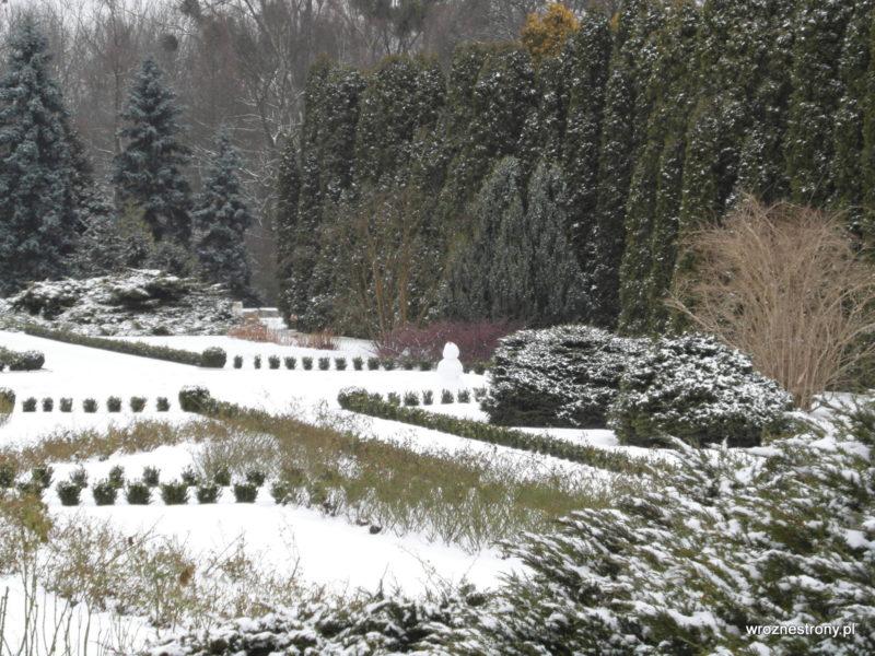 Ogród Botaniczny zimą