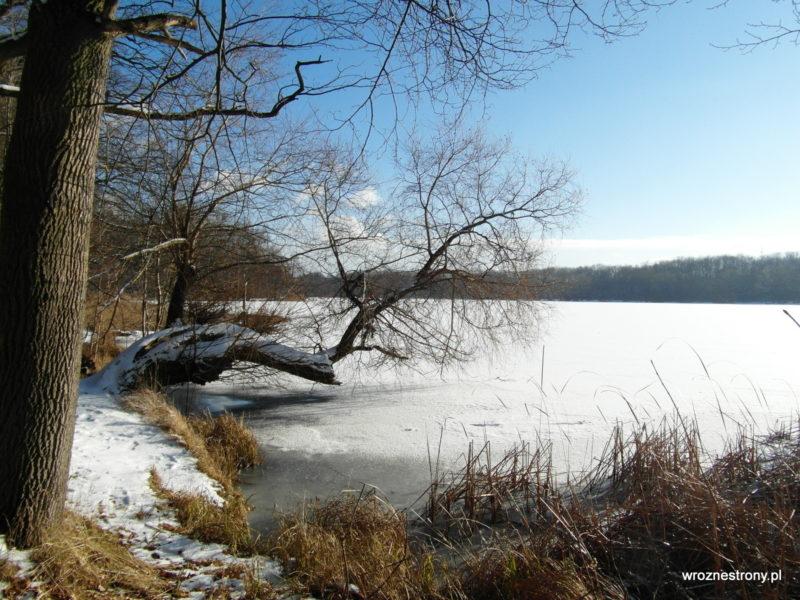 Nad Jeziorem Rusałka zimą