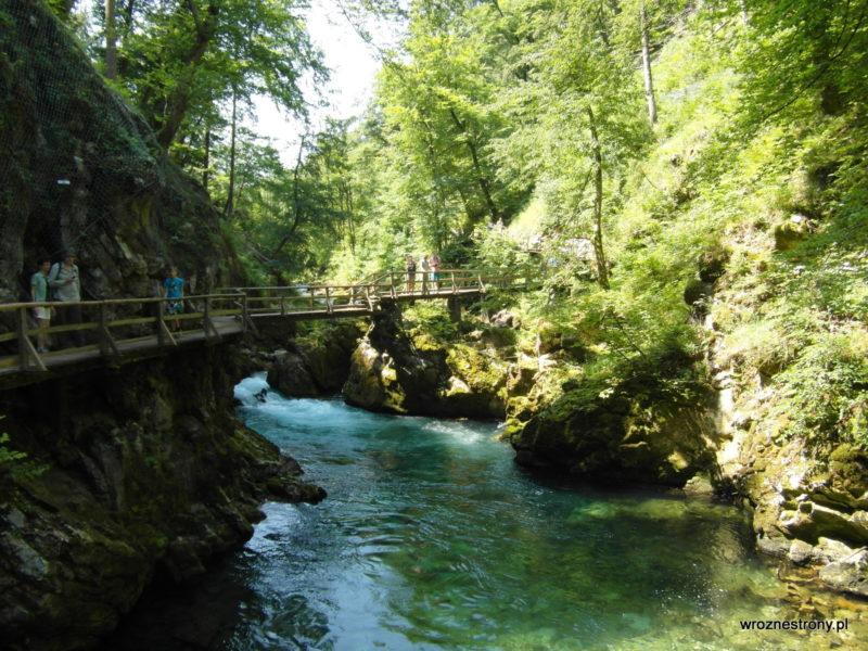 Piękna turkusowa woda w rzece Radovna