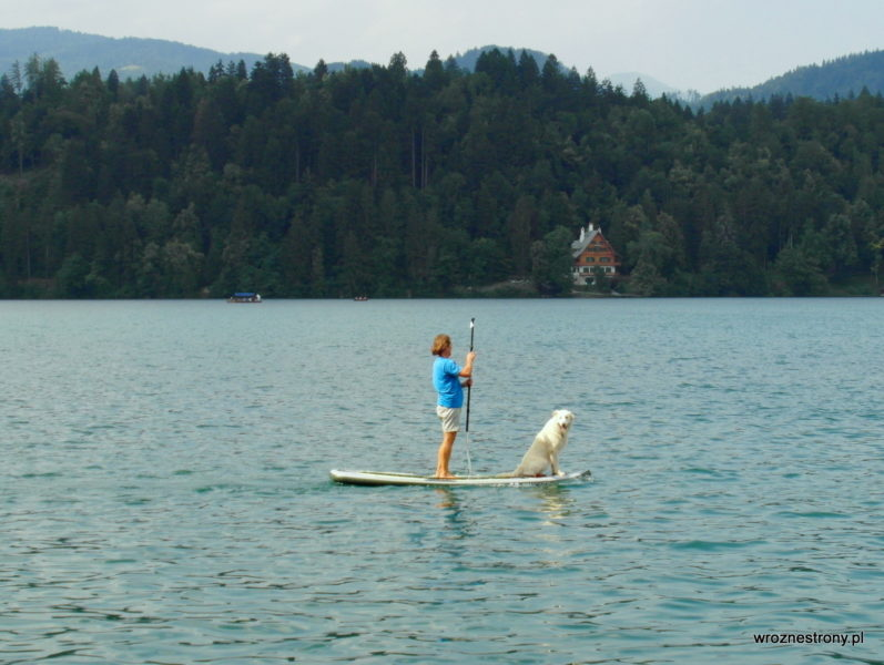 Po Jeziorze Bled można pływać w różny sposób