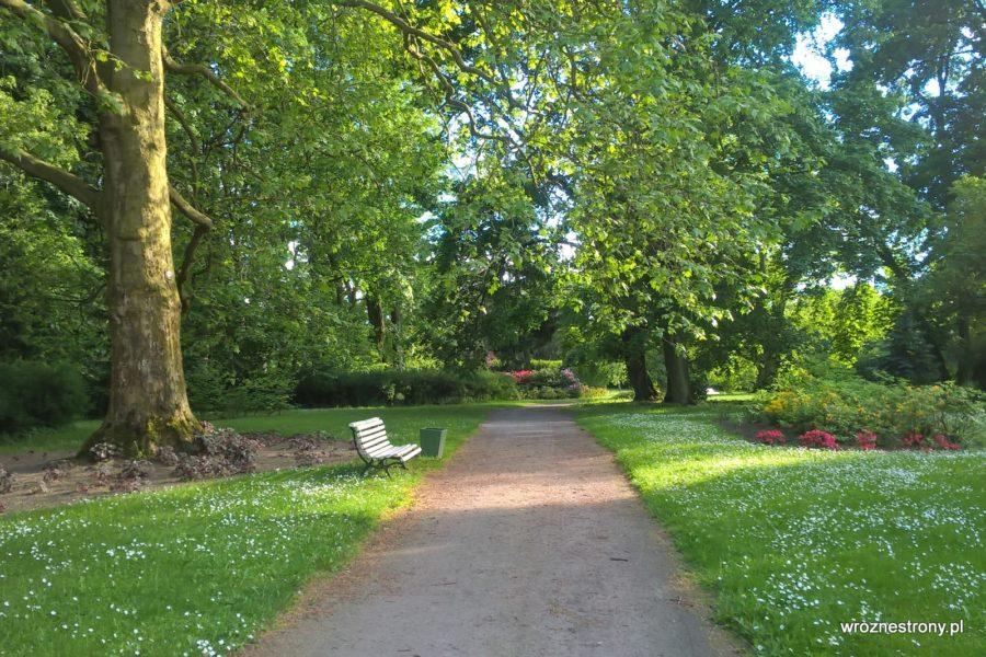Park wokół pałacu w Lubostroniu