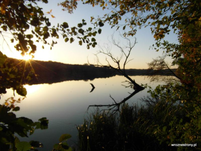 Najbardziej fotogeniczne drzewo nad Jeziorem Rusałka ;)
