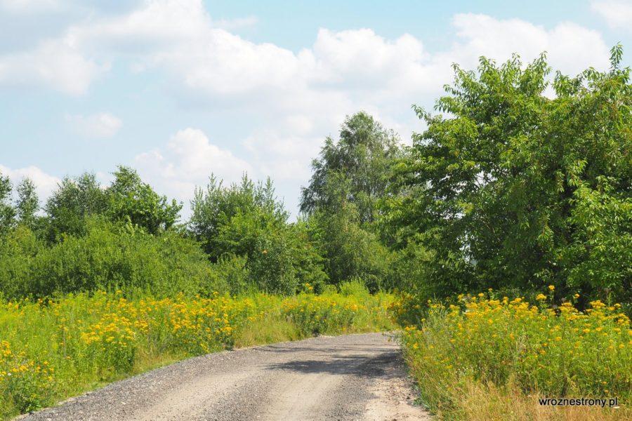 Czarny szlak rowerowy, Borne Sulinowo, Pojezierze Drawskie