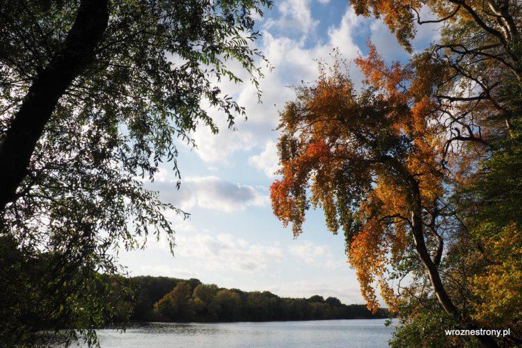 Jezioro Rusałka, Poznań, październik 2019