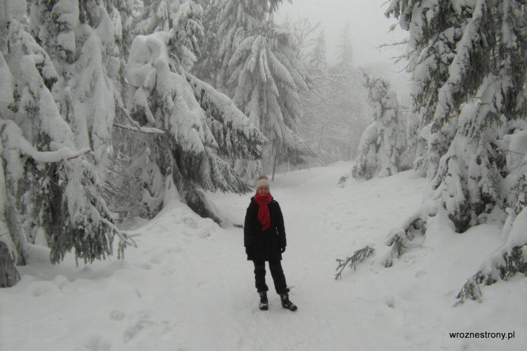 Beskid Śląski styczeń 2019
